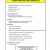 CURSO: COMPETENCIAS PRELABORALES organizado por el Ayuntamiento de San Fernando